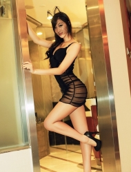 Escort  Cindy from Bayswater